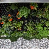 The vertical garden integrated into the courtyard